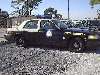 FHP_car_lineup_at_pinellas_jan_2002_th.jpg (5024 bytes)